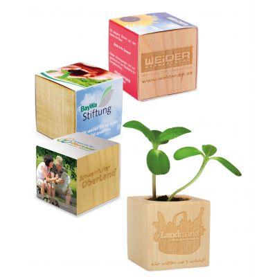 Pflanz-Holz Ostern